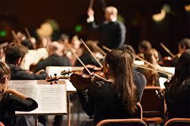 Professore d'orchestra – Sezione Archi